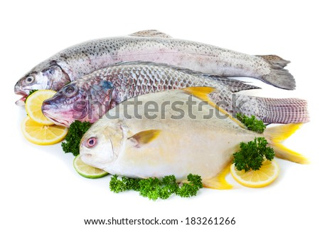 Fresh raw fish display with lemon and lime on a white background - stock photo