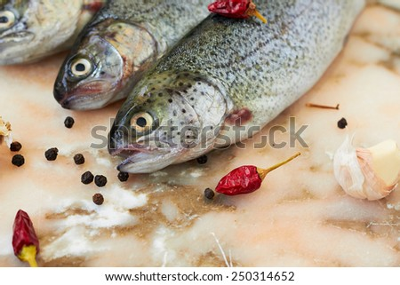 Fresh raw fish trout and spices - stock photo