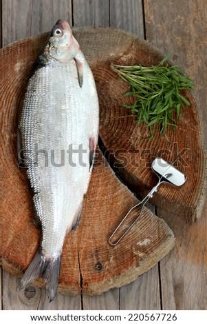 fresh, raw fish whitefish - stock photo