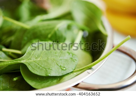 fresh raw green spinach close up/ healthy food - stock photo