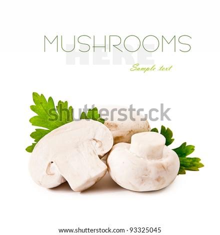 fresh raw  mushrooms  on a white background - stock photo