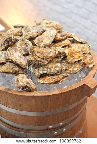 fresh raw oysters - stock photo