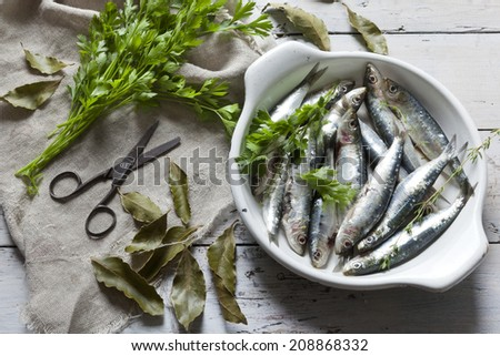 fresh raw sardines on enamelled tray with parsley bouquet on rustic background with rust vintage scissor on white wooden table