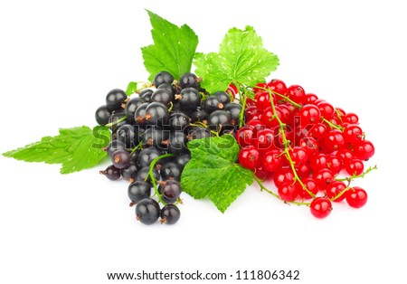 Fresh red and black currant with green leaves isolated on white background - stock photo