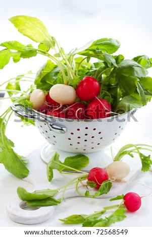 Fresh red and white radish - stock photo
