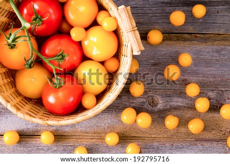 Fresh red and yellow tomatoes , some on the vine, displayed in a rustic woven wicker basket on a wooden table with scattered cherry tomatoes, overhead view - stock photo