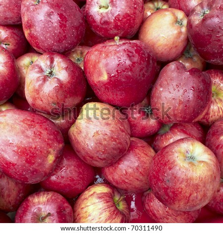 fresh red apples, natural background