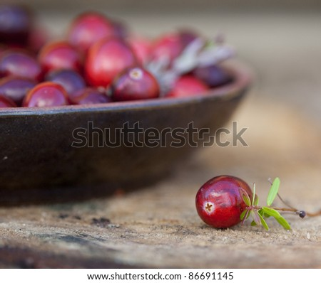 Fresh red  cranberries in bowl. With one berry separated with leaves - stock photo