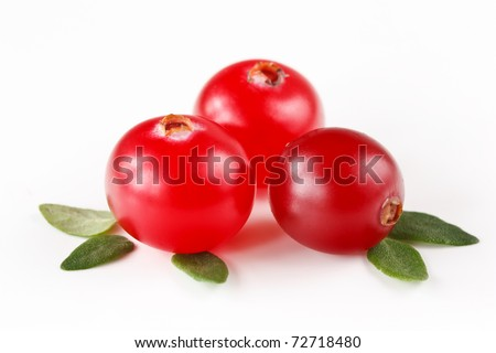 Fresh red cranberries with leaves on a white.