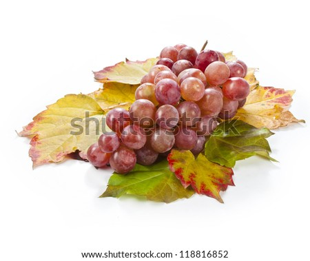 fresh red grape wine isolated on a white background decorated with autumn leaves