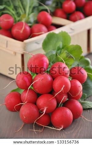 Fresh red radish - stock photo