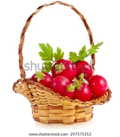 Fresh red radish in the basket isolated on white background - stock photo
