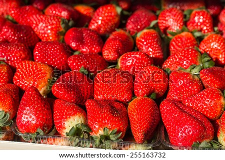 Fresh Red Ripe Strawberry ready for sale on market. - stock photo