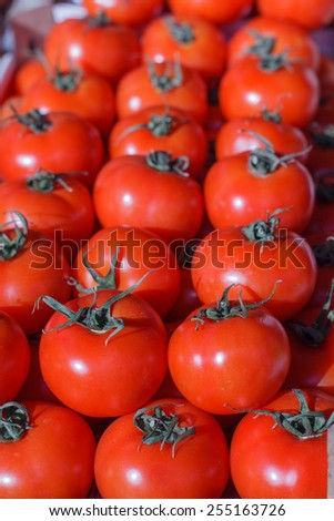 Fresh Red Ripe Tomatoes heap on the market. - stock photo