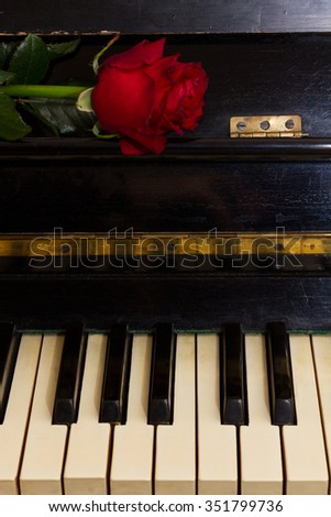 fresh red rose flower  on vintage piano