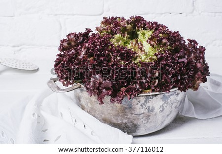 Fresh red salad lettuce leaves in a metal pan on a background of white brick wall top view close up horizontal - stock photo