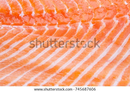 fresh red salmon fillet Closeup background
