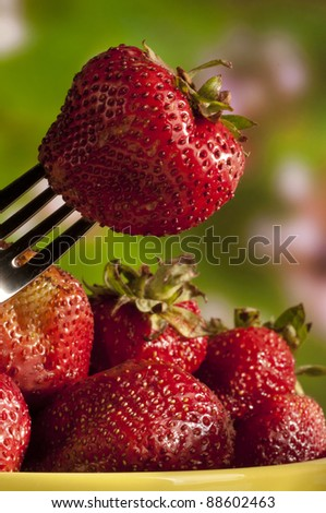fresh red strawberry on fork