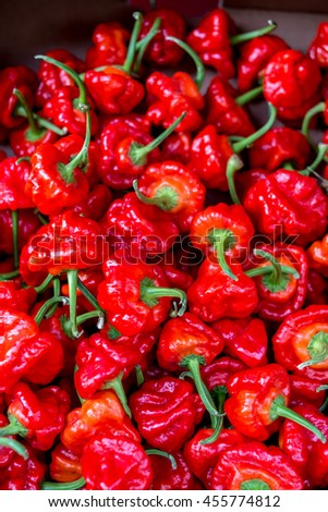 Fresh red sweet bell peppers on display at the market. Pile of red bell peppers background - stock photo