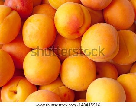 Fresh ripe apricots - stock photo