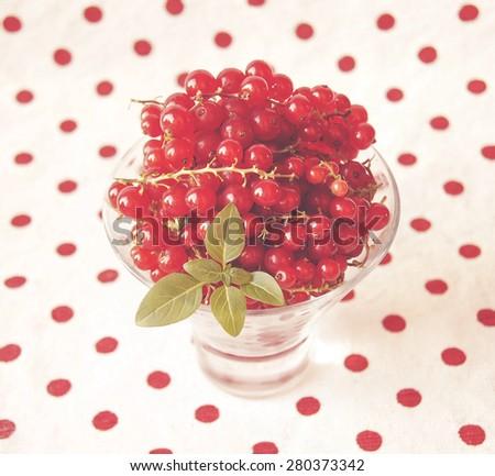 fresh ripe currant - stock photo