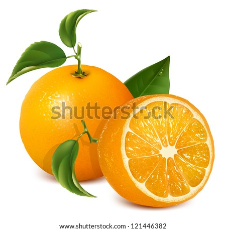 Fresh ripe oranges with leaves. Rasterized version of vector illustration  ID: 82043770 - stock photo