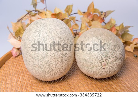 Fresh ripe organic cantaloupe melons in a basket on maple leaves background - stock photo