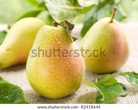 Fresh ripe pears on natural  background. Selective focus - stock photo