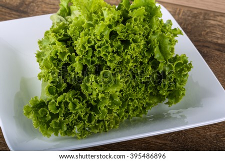 Fresh ripe Salad leaves on the wood background
