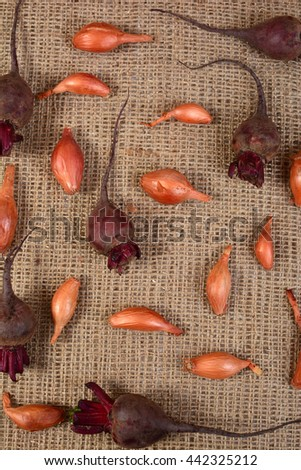 Fresh ripe vegetables on sacking. Natural canvas texture. Organic food. Background with vegetables on sacking. Bow. Beet. Garlic. Beet. Carrot. Scattered vegetables on a rough cloth. - stock photo