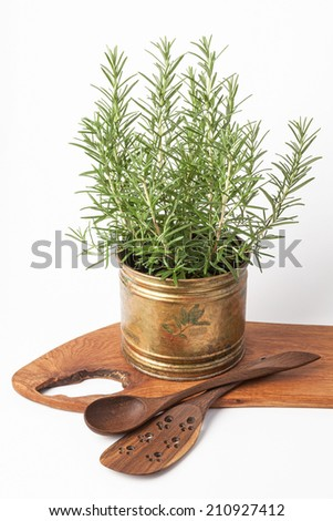 Fresh rosemary and wooden kitchen utensils isolated on white. - stock photo