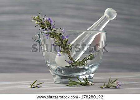 Fresh rosemary herb in glass mortar with pestle isolated on grey background  - stock photo