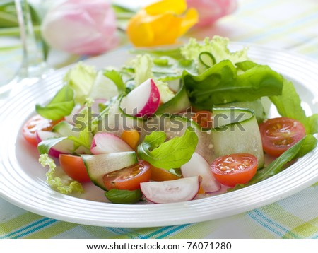 Fresh salad from raw vegetables and lettuce