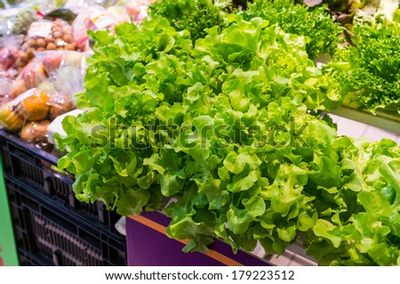 fresh salad green selling in the supermarket - stock photo