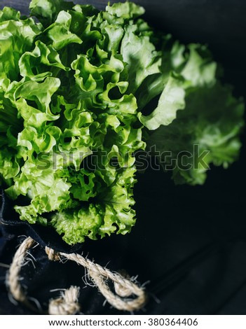 Fresh salad lettuce leaves on a black wooden background vertical isolated closeup - stock photo