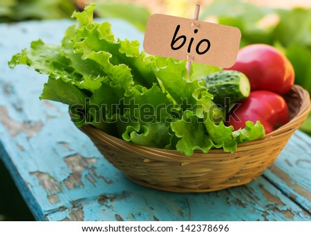 Fresh salad lettuce, tomato, cucumber in bucket. Tag with word bio.  Selective focus. Natural/bio/organic/eco products. - stock photo