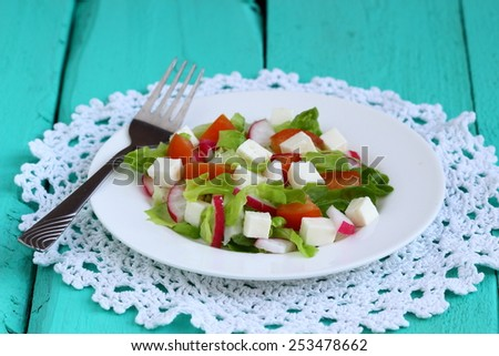 Fresh salad of cheese, tomato, peppers, radishes - stock photo