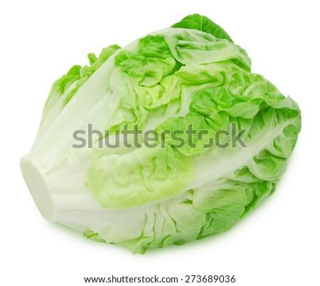 Fresh salad romaine lettuce isolated on white background - stock photo