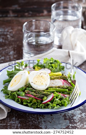 Fresh salad with lettuce, asparagus, radish and boiled eggs - stock photo