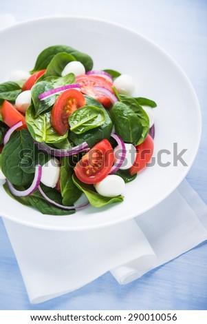 Fresh salad with mozzarella cheese, tomato, spinach and purple onion on blue wooden background close up. Healthy food. - stock photo