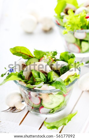 Fresh salad with radishes, mushrooms and cucumbers - stock photo