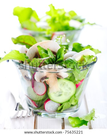 Fresh salad with radishes, mushrooms and cucumbers on a white isolated background