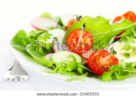 Fresh salad with radishes, tomatoes and cucumbers - stock photo