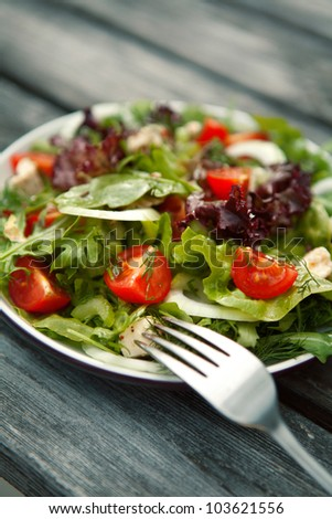 fresh salad with tomato and cucumber.green - stock photo