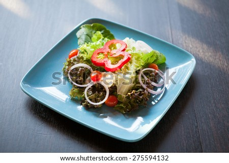 Fresh salad with tomatoes and onions - stock photo
