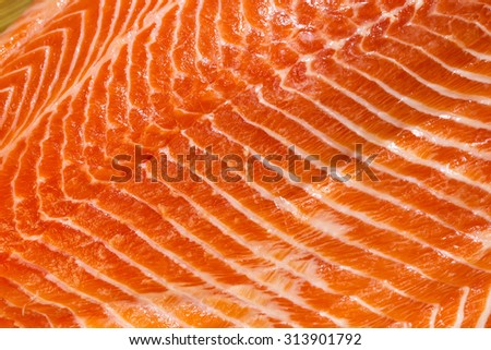Fresh salmon fillet meat Taste Texture