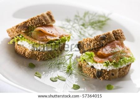 Fresh salmon sandwich on a plate close up - stock photo