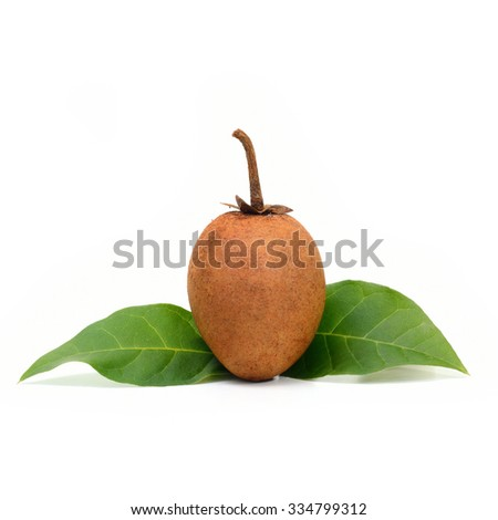 fresh sapodilla with leaves isolated on white background.