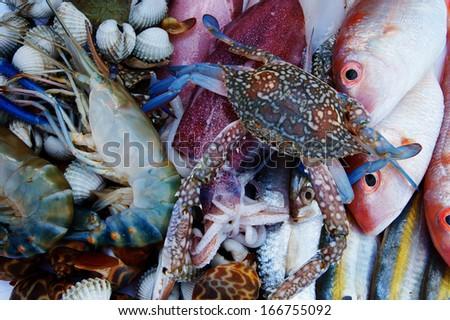 fresh seafood background - stock photo