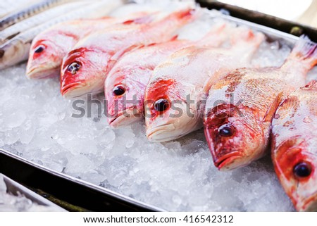 Fresh seafood, fish, red snapper are on the ice in a luxurious open-air restaurant. Flat Lay. - stock photo
